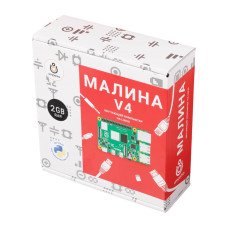 Малина v4